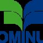 Logo-Dominus
